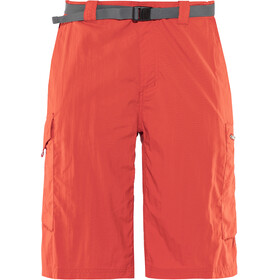 Columbia Silver Ridge Cargo - Shorts Homme - rouge